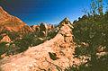 Devils Garden Trail (3678744837).jpg