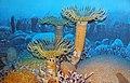 Diorama of a Devonian seafloor - corals 1 (30717353337).jpg
