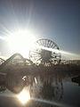 Disney's California Adventure Ferris Wheel.jpg