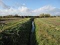 Ditch by Hurst Lane - geograph.org.uk - 1560097.jpg