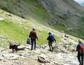 Doggies' descent - geograph.org.uk - 451988.jpg