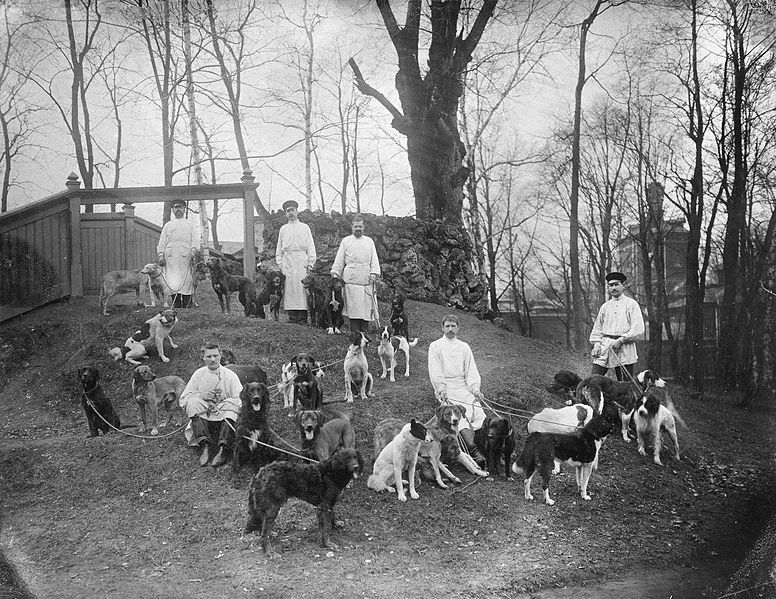Dogs with their keepers at the Physiology Department Wellcome