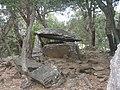 Dolmen de la Siureda de face dans son environnement.JPG
