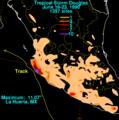 Douglas 1990 rainfall.png