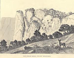 Douglas Hamilton - Pillar Rocks