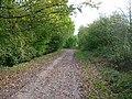 Downslink, between Copsale and West Grinstead - geograph.org.uk - 68879.jpg