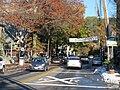 Downtown Lambertville, New Jersey.jpg