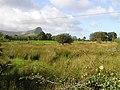 Drinaghan Townland - geograph.org.uk - 1482352.jpg