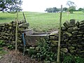 Drinking Trough in a field wall - geograph.org.uk - 1350524.jpg