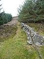 Dry stone wall - geograph.org.uk - 1546471.jpg