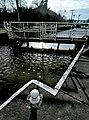 Dutton locks (1) - geograph.org.uk - 1146170.jpg
