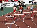 ETCH 2015 Cheboksary — Men 400 metres hurdles.JPG