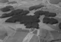 ETH-BIB-Waldpartie, Willisau-LBS H1-024407.tif