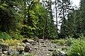 Eagle Falls, Skykomish River swimming hole 03.jpg