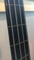 Ebonol Fingerboard of a Squier Fretless Jazz Bass.png