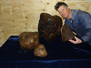 Ambergris - Ambergris from the North Sea