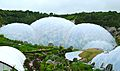 Eden Project Dome.jpeg