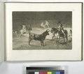 El célebre Fernando del Toro, barilarguero, obligando á la fiera con su garrocha (NYPL b14923841-1109433).tiff