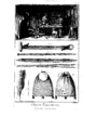 Encyclopedie volume 2b-050.png