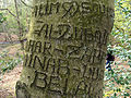 Epping Forest-graffiti-398.JPG