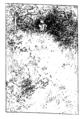 Ett hem Carl Larsson svartvit teckning 14.png