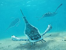Life restoration of Eurypterus remipes.