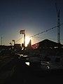 Evening sun (8962557321).jpg