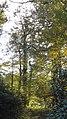 Fürst Pückler Park Bad Muskau - panoramio (24).jpg