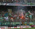 FCS gegen Rapid Wien 39.JPG