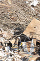 FEMA - 34120 - Urban Search and Rescue worker in a pile of rubble in Tennessee.jpg