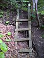 FLT M07 8.7 mi - Ladder up steep bank near Keshequa Creek, 2x4s - panoramio.jpg