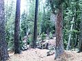 Fairy Meadows -Nanga Parbat Base Camp46.jpg