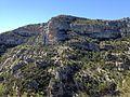 Falaises sommitales des Gorges de la Nesque.jpg
