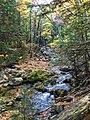 Fall Water (243607615).jpeg