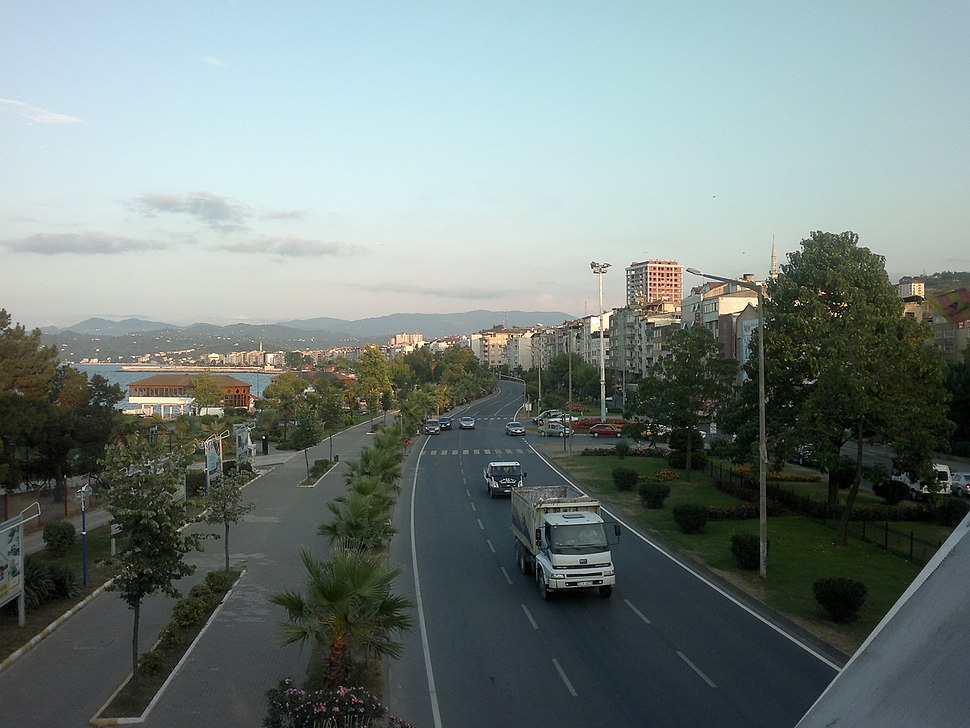 A panoramic view of the town