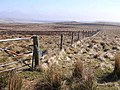 Fence on Otterburn Ranges - geograph.org.uk - 1264064.jpg