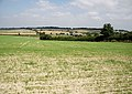 Fields East of Cheriton - geograph.org.uk - 947331.jpg