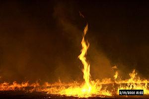 Fire whirl (FWS)