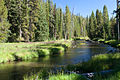 Firehole River (3943881967).jpg