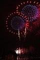 Fireworks - July 4, 2010 (4773778690).jpg