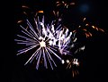 Fireworks 1 (340730638).jpg