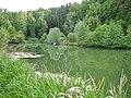 Fischteich an der Eyach - panoramio.jpg