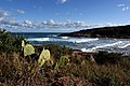 Fishermans Bay New South Wales Aust. (12475212253).jpg