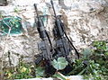 Flickr - Israel Defense Forces - M-16s Found in Civilian Home.jpg
