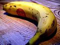 Flickr - cyclonebill - Banan (1).jpg