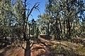 Flinders Ranges SA 5434, Australia - panoramio (113).jpg