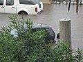 Flood - Via Marina, Reggio Calabria, Italy - 13 October 2010 - (33).jpg