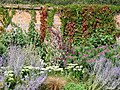 Flower border in the walled garden - geograph.org.uk - 1586822.jpg