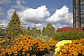 Flowerbed by the RBC building at Colborne St. and Brant Ave in Brantford, Ontario - panoramio.jpg