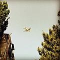 Flugzeug..jpg